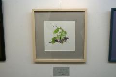 toshiosugimoto18ex_19